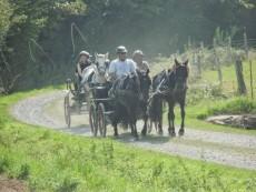 sur les chemins de campagne