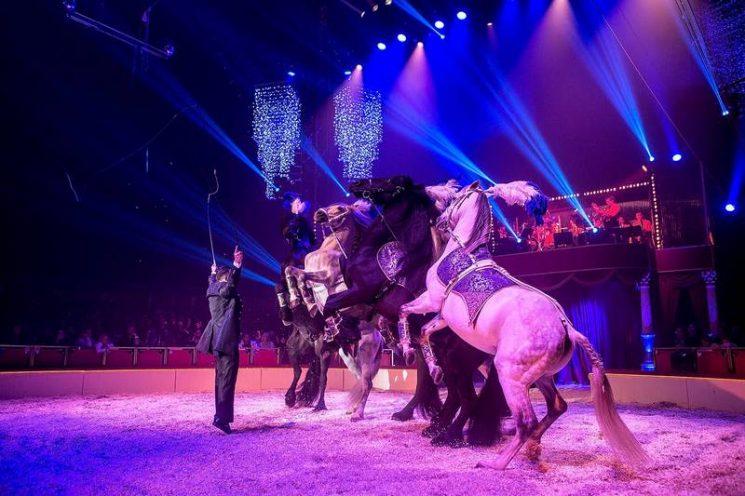 Gianni d'Ambrosio et ses chevaux